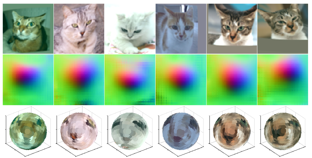 Similar to the previous image, this diagram shows the process of transforming six photos of various cats into more spherical representations.